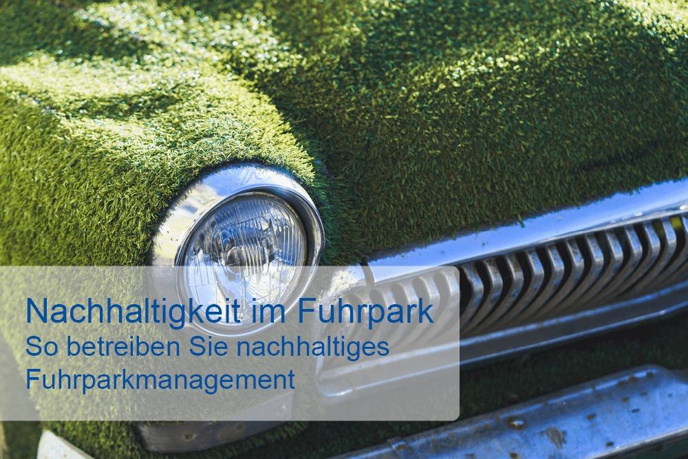 Nachhaltigkeit im Fuhrpark